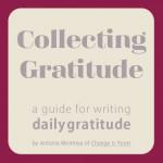 GratitudeGuide