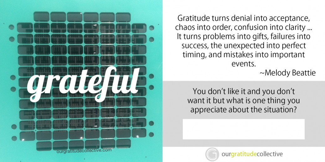 A Year of Thanks – 52 Weeks Inspired by Gratitude – Download eBook
